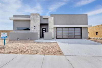El Paso Single Family Home For Sale: 12341 Clifton Hill