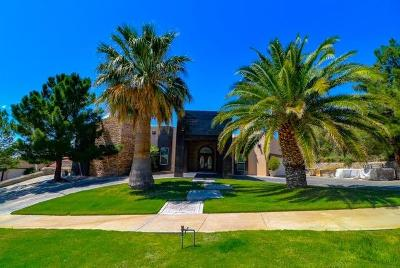 El Paso Single Family Home For Sale: 6409 Amposta Drive