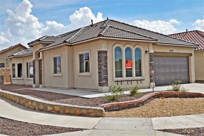 El Paso Single Family Home For Sale: 14336 Seth Payne Drive