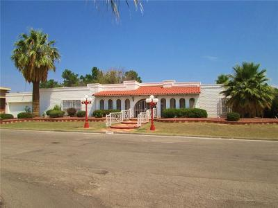 El Paso Single Family Home For Sale: 10965 Gary Player Drive