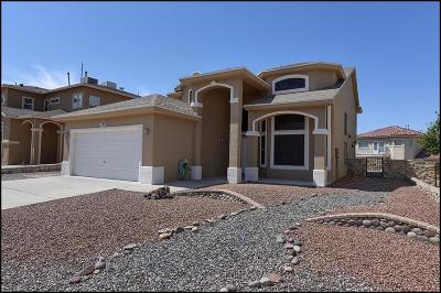 El Paso Single Family Home For Sale: 1629 Monte Del Sol