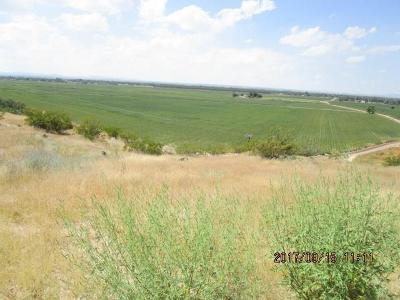 Residential Lots & Land For Sale: 11521 Janis
