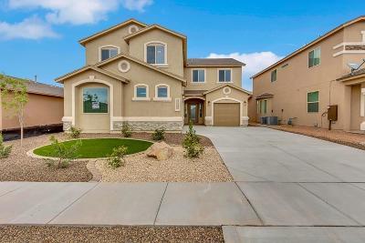 Single Family Home For Sale: 13109 Cozy Cove Avenue