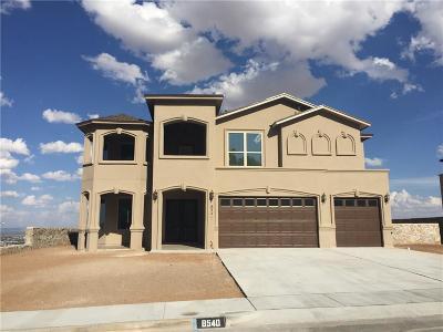 El Paso Single Family Home For Sale: 8540 Mountain Laurel Drive