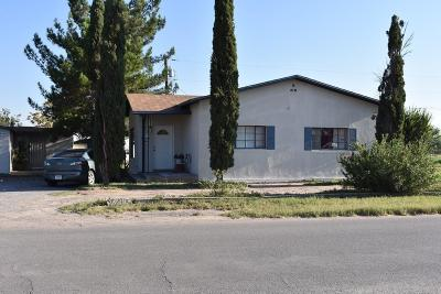 San Elizario Single Family Home For Sale: 683 & 685 Borrego Road