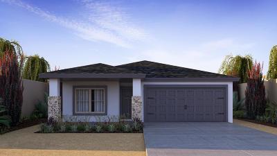 Single Family Home For Sale: 14187 Peyton Edwards