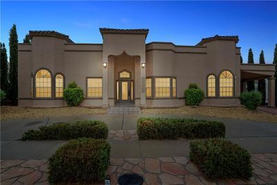El Paso Single Family Home For Sale: 11908 Paseo Del Rey Drive