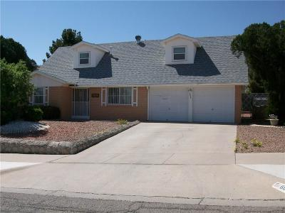 Single Family Home For Sale: 8805 Galena Drive