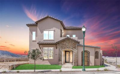 El Paso Single Family Home For Sale: 501 S Festival Drive