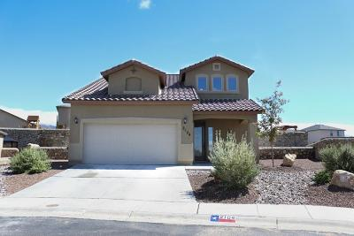 El Paso Single Family Home For Sale: 2104 Nearpoint Drive