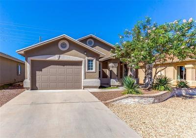 Socorro Single Family Home For Sale: 1132 Cielo Bonito