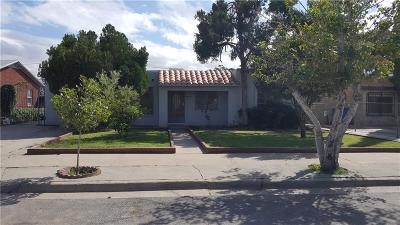 El Paso Single Family Home For Sale: 5520 Paraguay
