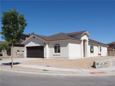 Socorro Single Family Home For Sale: 11204 Cielo Bonito