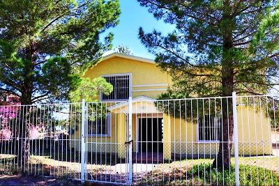 Socorro Single Family Home For Sale: 11811 Brisa Del Valle Drive