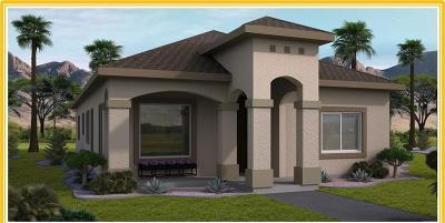 El Paso Single Family Home For Sale: 14369 Chris Zingo Lane