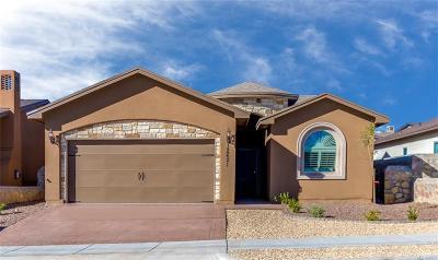 El Paso Single Family Home For Sale: 13858 Sunnybank Way