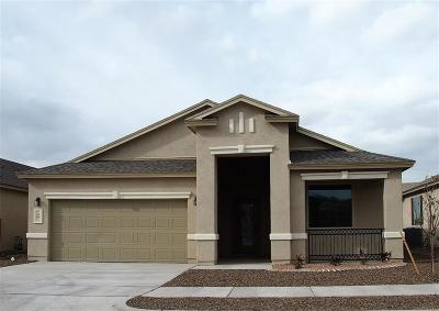 Single Family Home For Sale: 143 Manzanita Drive