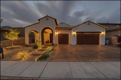 El Paso Single Family Home For Sale: 6321 Via Serena Drive