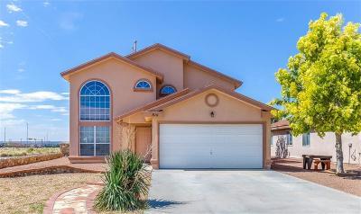 Anthony Single Family Home For Sale: 814 Jaime Street