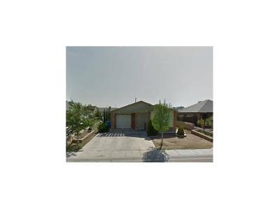 El Paso Single Family Home For Sale: 10345 Valle Koki Drive