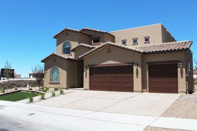 Single Family Home For Sale: 6681 Contessa Ridge