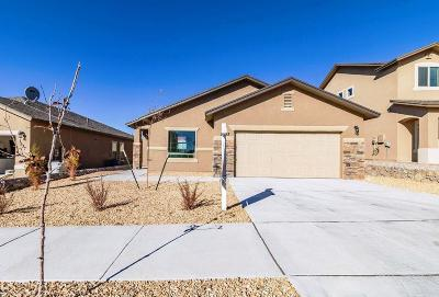 El Paso Single Family Home For Sale: 7533 Wolf Creek Drive