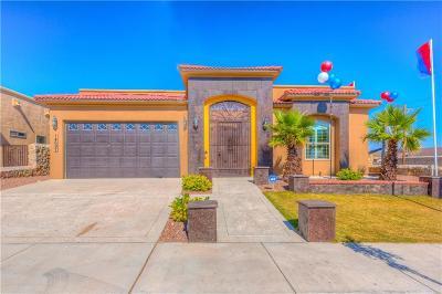 Single Family Home For Sale: 14697 Long Shadow Avenue
