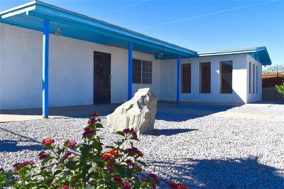 Canutillo Single Family Home For Sale: 602 Antelope Road