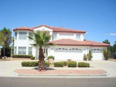 El Paso Single Family Home For Sale: 1959 Paseo Del Prado Drive
