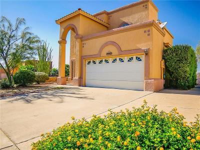 El Paso Single Family Home For Sale: 7465 Plaza Redonda Drive