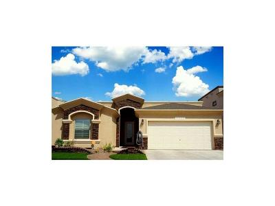 El Paso Single Family Home For Sale: 2158 Abes Way Drive