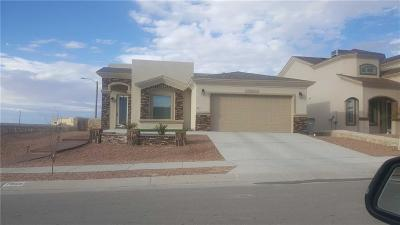 El Paso Single Family Home For Sale: 7816 Enchanted View Drive