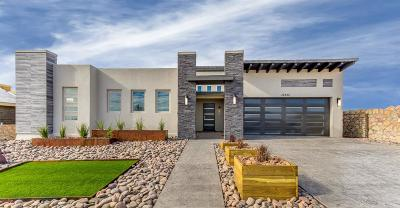 El Paso Single Family Home For Sale: 12333 Freshwater