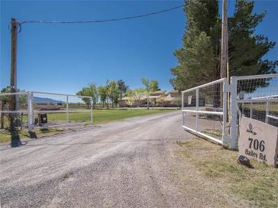 El Paso Single Family Home For Sale: 706 Bailey Road