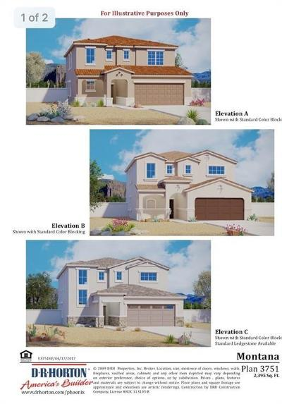 Canutillo Single Family Home For Sale: 7877 Enchanted Range Drive
