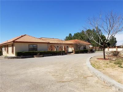 Santa Teresa NM Single Family Home For Sale: $387,000