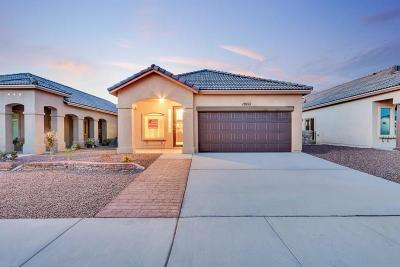 Single Family Home For Sale: 575 Lanner Drive