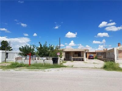 Canutillo Single Family Home For Sale: 849 Coach Road
