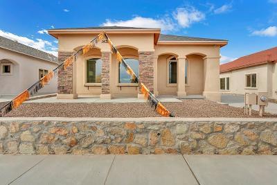 Single Family Home For Sale: 14321 Nick Drahos
