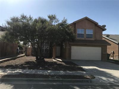 El Paso Single Family Home For Sale: 836 Dakota River Avenue