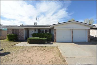 Single Family Home For Sale: 9901 Sidewinder Street