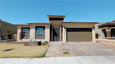 El Paso TX Single Family Home For Sale: $259,000