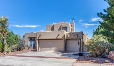 El Paso Single Family Home For Sale: 554 Rosinante Road