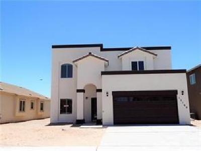 Single Family Home For Sale: 2253 Lisa Sherr Street