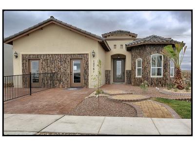 El Paso Single Family Home For Sale: 12761 Valentine Avenue