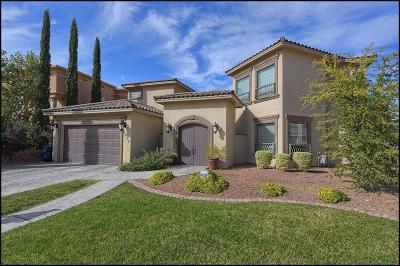 El Paso Single Family Home For Sale: 5817 Diamond Point Circle