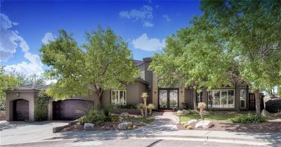 El Paso Single Family Home For Sale: 745 Los Miradores Drive