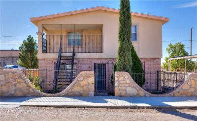 Canutillo Single Family Home For Sale: 1330 Camelia Road