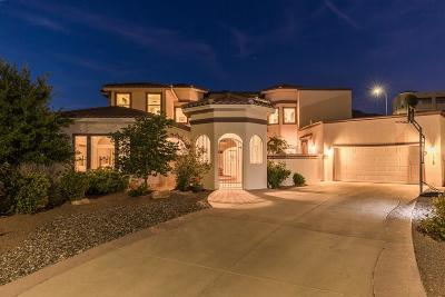 El Paso Single Family Home For Sale: 6313 Franklin Crest Drive