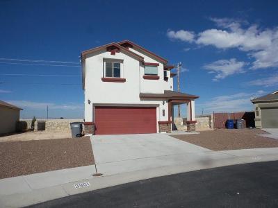 El Paso Single Family Home For Sale: 3901 Loma Adriana Drive